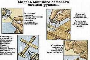 Мухосамолет