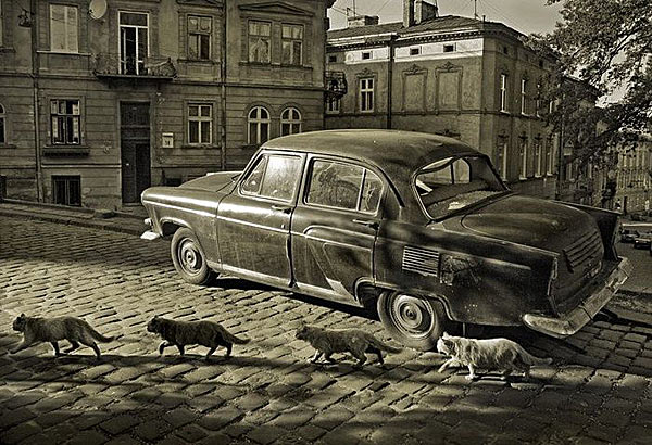 Гротескные реалии Санкт-Петербурга глазами Алексея Петросяна