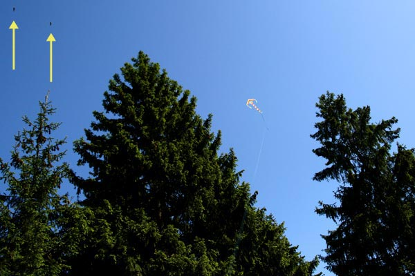 Запуск воздушного змея 31 мая 2009 года: странные объекты