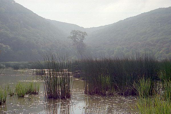 Природный пейзаж. Тамань. 1997 год.