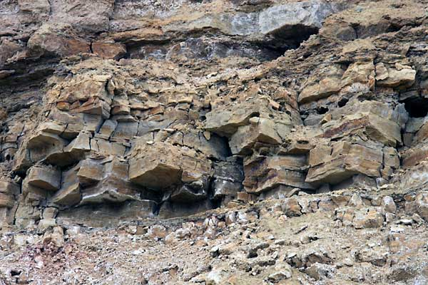 Отличные пласты камня на трилобитне