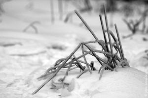 Иероглиф зимы.