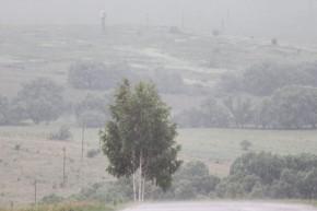 Фото из деревни. Ивань. 2011 год.