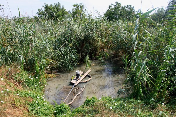 Прудик, где забирается вода для полива.