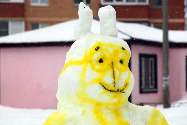 Снежный заяц днём.