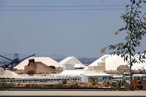 Соль на берегу Салинас де Торревьеха.