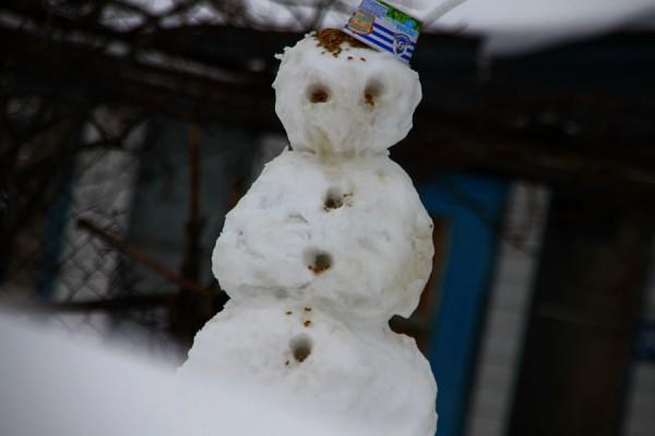Снеговик-птицеед.